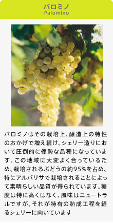 http://www.sherry-japan.com/images/knowledge-grape-1.jpg