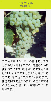 http://www.sherry-japan.com/images/knowledge-grape-3.jpg