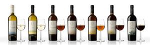 http://www.sherry-japan.com/img/taste1-0.jpg